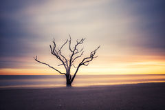 Botany Bay beach at cloudy sunset Stock Photography