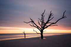 Botany Bay beach at cloudy sunset Royalty Free Stock Images
