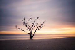Botany Bay beach at cloudy sunset Stock Images