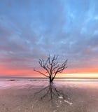 Botany Bay beach at cloudy sunset Stock Photos
