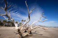 Botany Bay beach Stock Photo