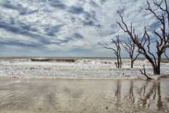 Botany Bay Beach Royalty Free Stock Photos