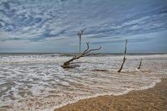 Botany Bay Beach Royalty Free Stock Photo