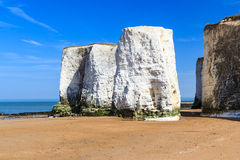 Botany Bay Broadstairs Kent England. Chalk Cliffs at Botany Bay beach at Broadstairs on the Kent Coastline England UK royalty free stock images