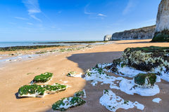 Botany Bay Broadstairs Kent England. Chalk Cliffs at Botany Bay beach at Broadstairs on the Kent Coastline England UK royalty free stock image