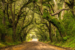 Botany Bay Road Stock Image