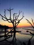 Botany Bay Stock Images