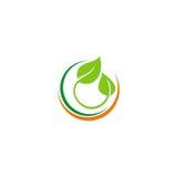 Botany green leaf organic logo Royalty Free Stock Photography