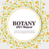 Botany 100 percent natural. Vector illustration design vector illustration