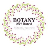 Botany 100 percent natural. Vector illustration design stock illustration