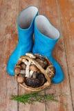 Botas de borracha azuis e uma cesta completamente dos cogumelos em um fundo de madeira Imagens de Stock Royalty Free