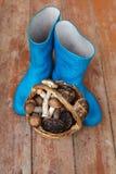 Botas de borracha azuis e uma cesta completamente dos cogumelos em um fundo de madeira Fotos de Stock Royalty Free