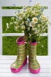 Botas de borracha com flores Imagem de Stock Royalty Free