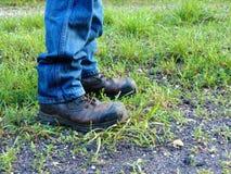 Botas de Brown en hierba verde Fotografía de archivo