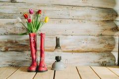 Botas de chuva coloridas com flores da mola e lâmpada do oli em b de madeira Fotografia de Stock Royalty Free