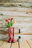 Botas de chuva coloridas com flores da mola e lâmpada do oli em b de madeira Imagens de Stock