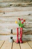 Botas de chuva coloridas com flores da mola e lâmpada do oli em b de madeira Foto de Stock