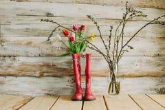 Botas de chuva coloridas com flores da mola e ramos do salgueiro em w Imagens de Stock