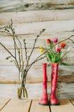 Botas de chuva coloridas com flores da mola e ramos do salgueiro em w Fotos de Stock