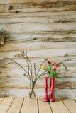 Botas de chuva coloridas com flores da mola e ramos do salgueiro em w Fotografia de Stock