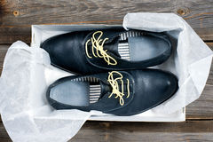 Botas de couro italianas Fotografia de Stock