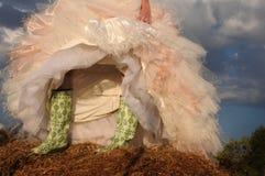 Botas de la boda Foto de archivo libre de regalías
