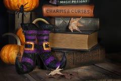 Botas e livros das bruxas Fotografia de Stock