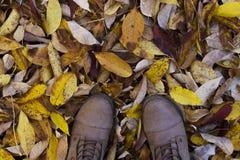 Botas en una pila de hojas Fotografía de archivo libre de regalías