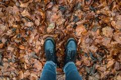 Botas negras en la tierra que es cubierta por las hojas marrones Imagenes de archivo