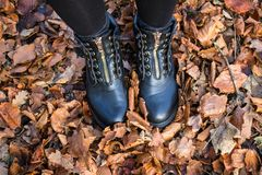 Botas vestindo da mulher e passeio nas folhas de outono imagem de stock