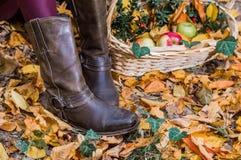 botas y manzanas Imágenes de archivo libres de regalías