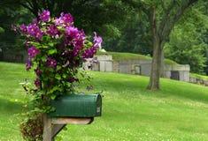 Boîte aux lettres avec les fleurs pourprées Images stock