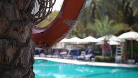 Bote salvavidas en un árbol por la piscina almacen de metraje de vídeo