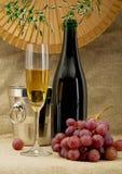 Botella, compartimiento, cubilete y uvas de Champán Imagen de archivo