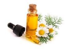 Botella con aceite esencial y flores frescas de la manzanilla aislados en el fondo blanco imagenes de archivo