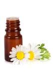 Botella con aceite esencial y flores frescas de la manzanilla aislados en el fondo blanco Fotografía de archivo