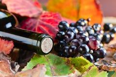 Botella con el vino Imagen de archivo libre de regalías
