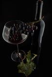 Botella con el vino rojo y vidrio y uvas Imagen de archivo