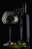 Botella con el vino rojo y vidrio y uvas III Imagen de archivo libre de regalías