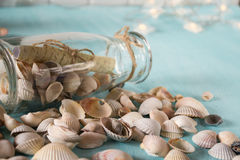 Botella con un mensaje, conchas marinas fotografía de archivo