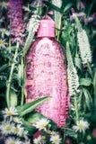 Botella cosmética herbaria o floral del producto en las hierbas y las flores fondo, visión superior Skincare, salud, cosmético na imagen de archivo