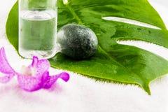 Botella de aceite de coco, piedra del huevo con las orquídeas rosadas del mokara y verde Fotos de archivo libres de regalías