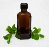 Botella de aceite de la menta y de menta fresca Foto de archivo libre de regalías