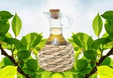 Botella de aceite de oliva Imagen de archivo libre de regalías