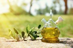 Botella de aceite de oliva en la arboleda verde oliva fotos de archivo libres de regalías