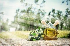 Botella de aceite de oliva en la arboleda verde oliva foto de archivo libre de regalías