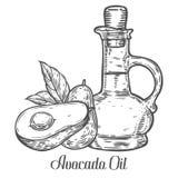 Botella de aceite del aguacate, fruta, hoja, planta Ejemplo grabado dibujado mano del grabado de pistas del bosquejo del vector I Foto de archivo