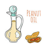 Botella de aceite dibujada mano colorida de cacahuete Imagenes de archivo