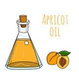 Botella de aceite dibujada mano colorida del albaricoque Fotografía de archivo