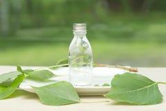 Botella de aceite esencial fotos de archivo libres de regalías